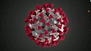 Coronvirus/Infectious Disease Policy